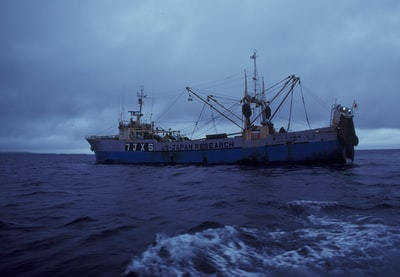How did Ireland's fishing industry get so bad?